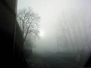 Meteo Alessandria: nebbie venerdì, nebbie nel weekend
