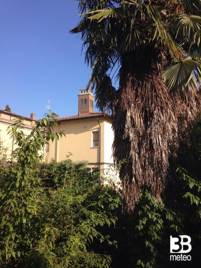 Giardino Nel Cuore Di Ravenna Foto Gallery 3b Meteo