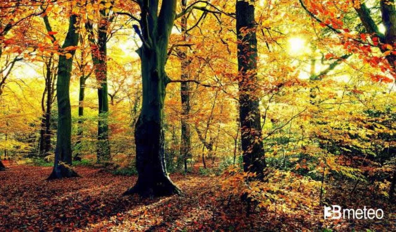 Equinozio d 39 autunno tra mitologia e scienza 3b meteo for Immagini autunno hd