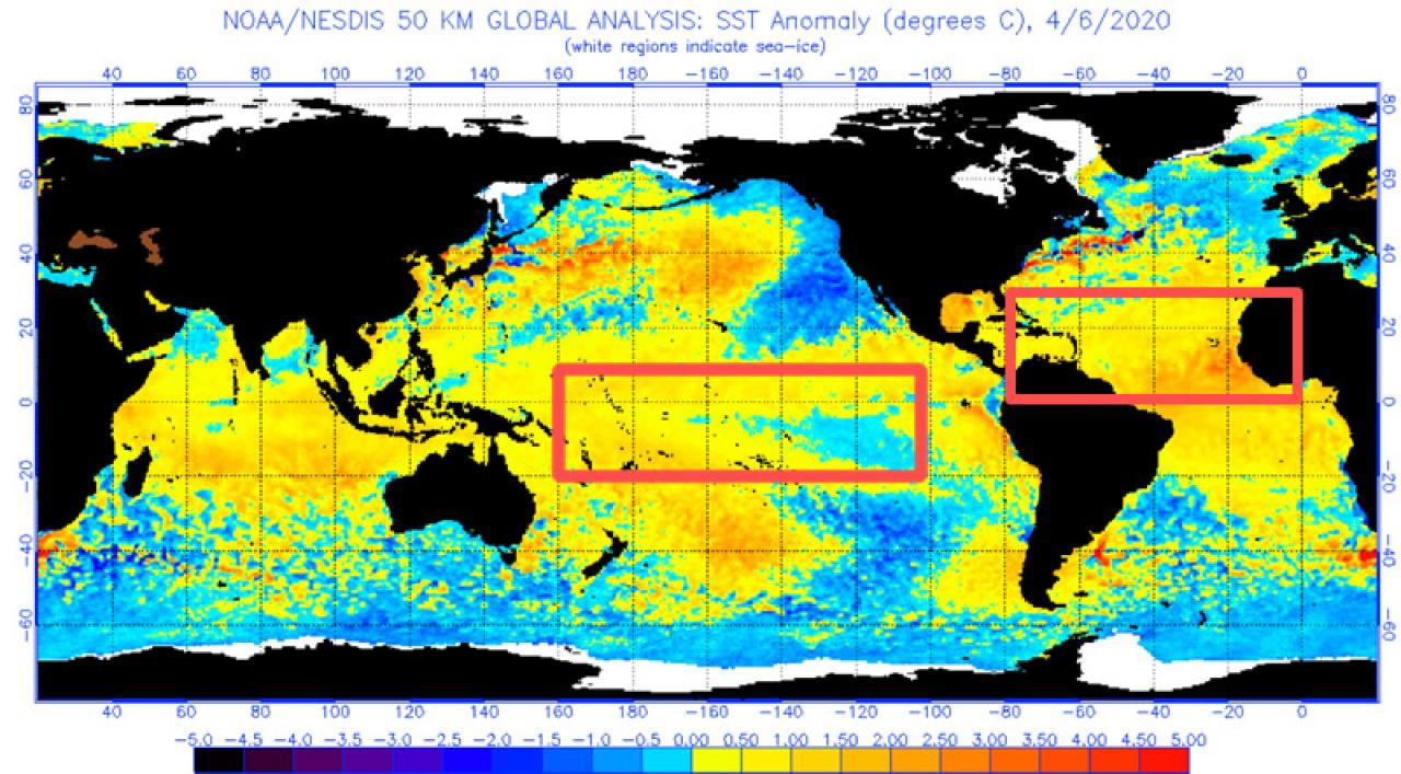 anomalia termiche oceano