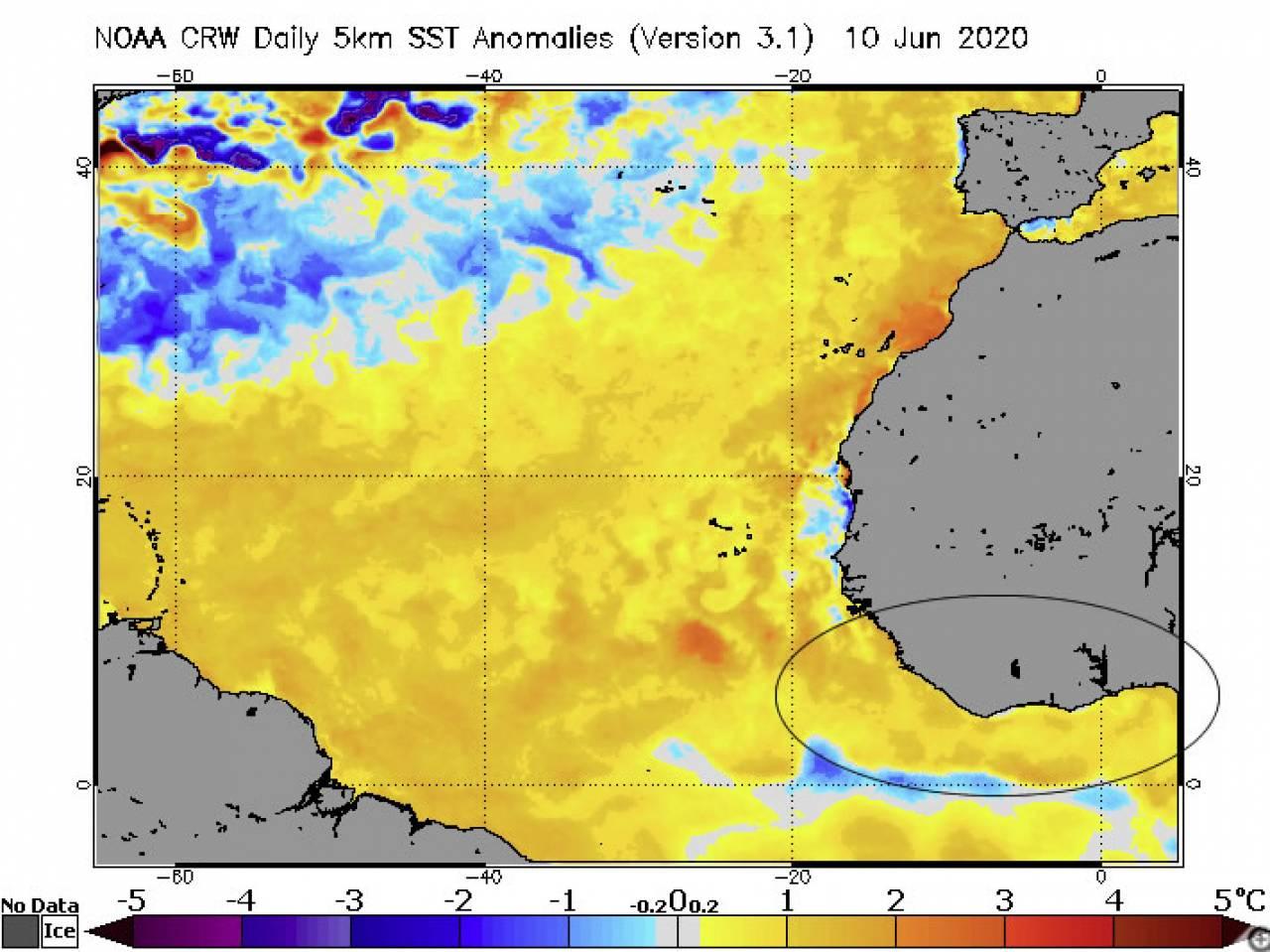 anomalie acque Golfo di Guinea 'calde'