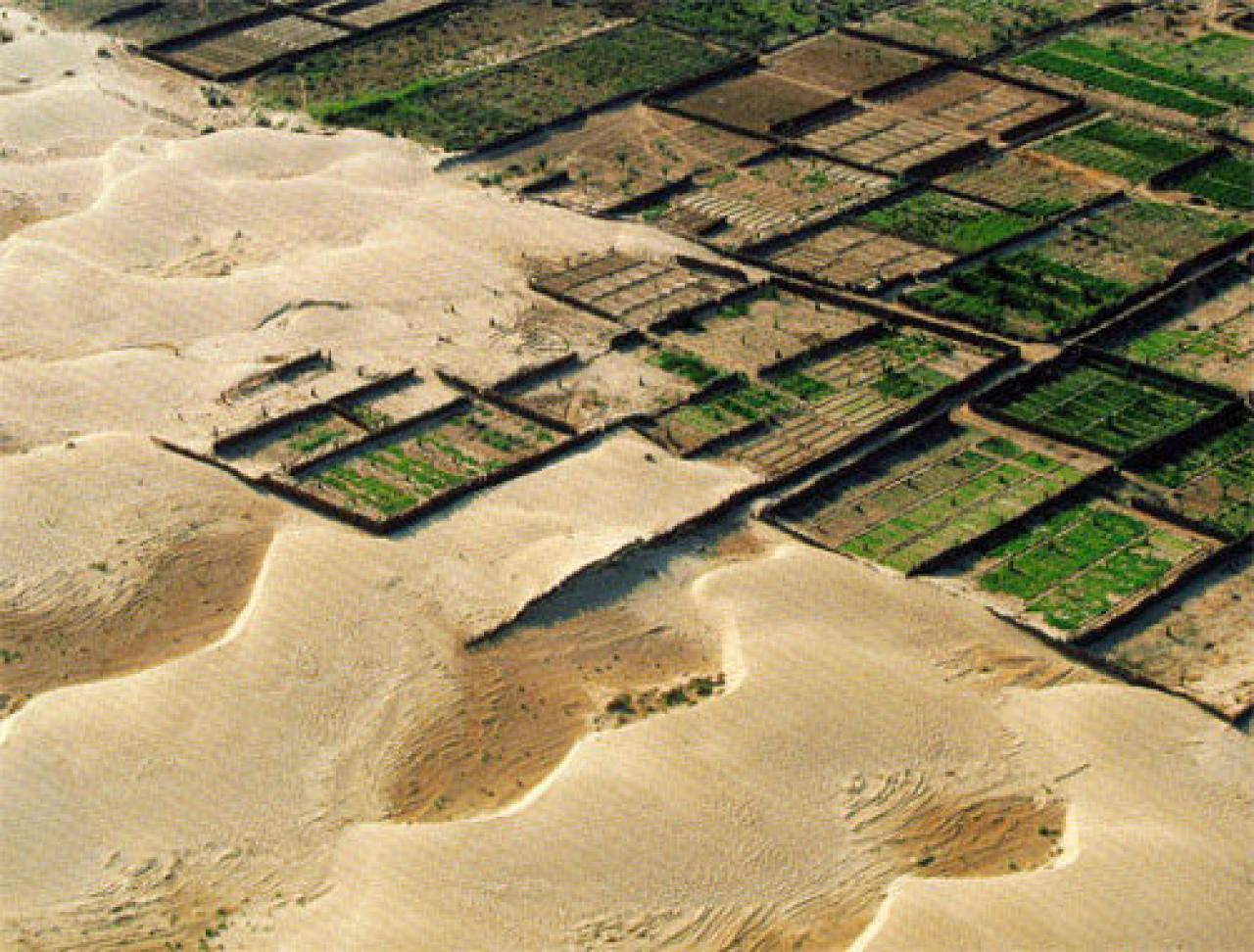 Cina: muraglia verde per fermare la desertificazione! « 3B ...