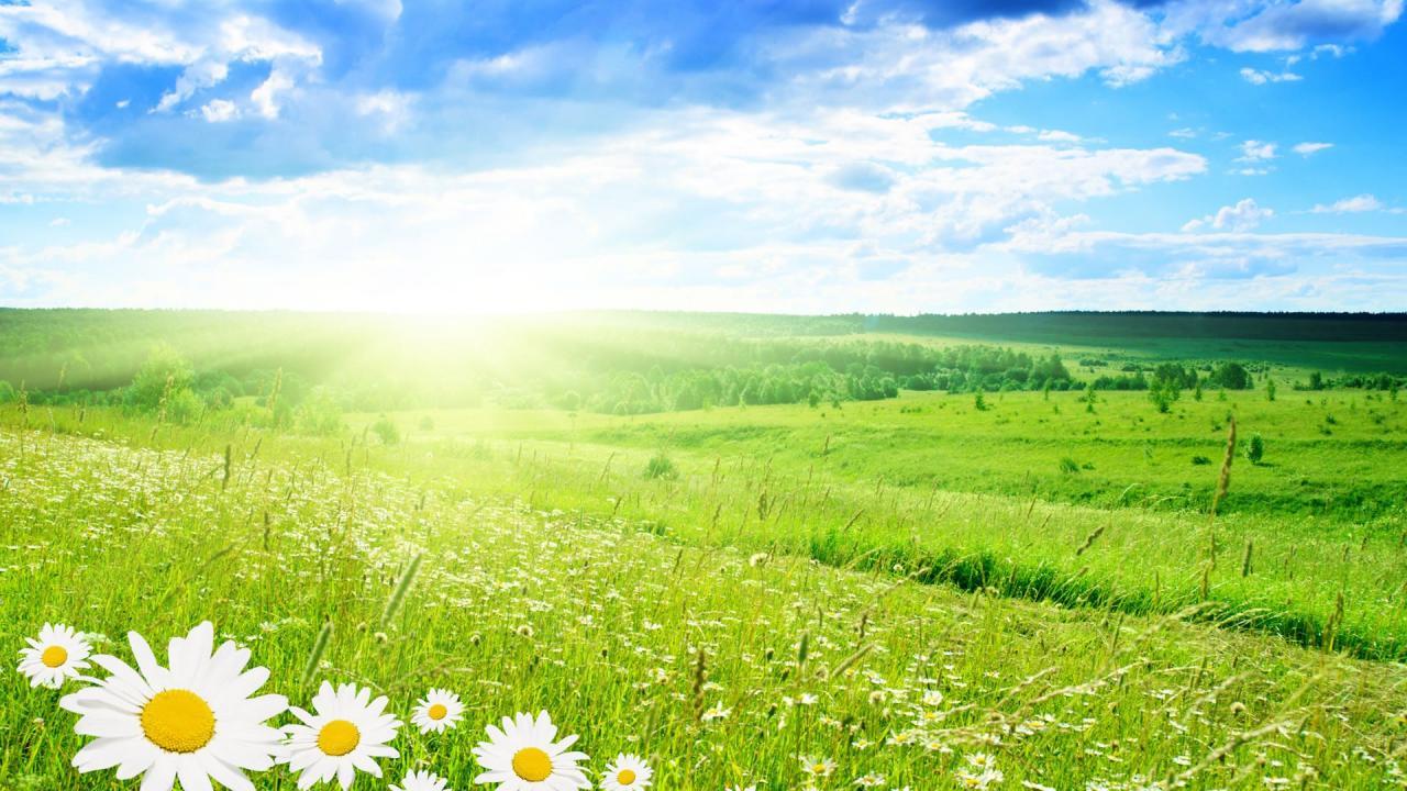 Caldo in aumento nei prossimi giorni ma a Pasqua e Pasquetta si cambia
