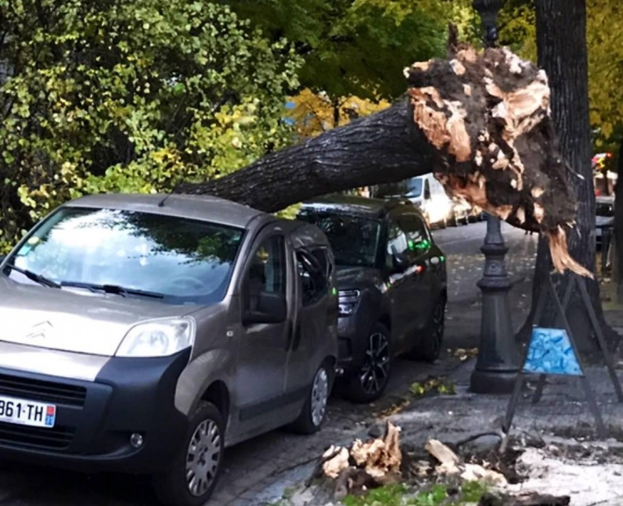 Danni per il vento di tempesta martedì in Occitania (Fonte immagine: France Bleu Occitanie via Twitter)