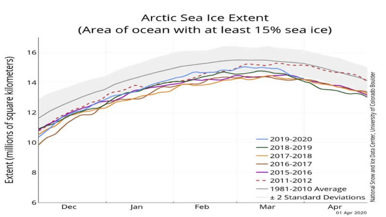 estensione ghiaccio artico marino