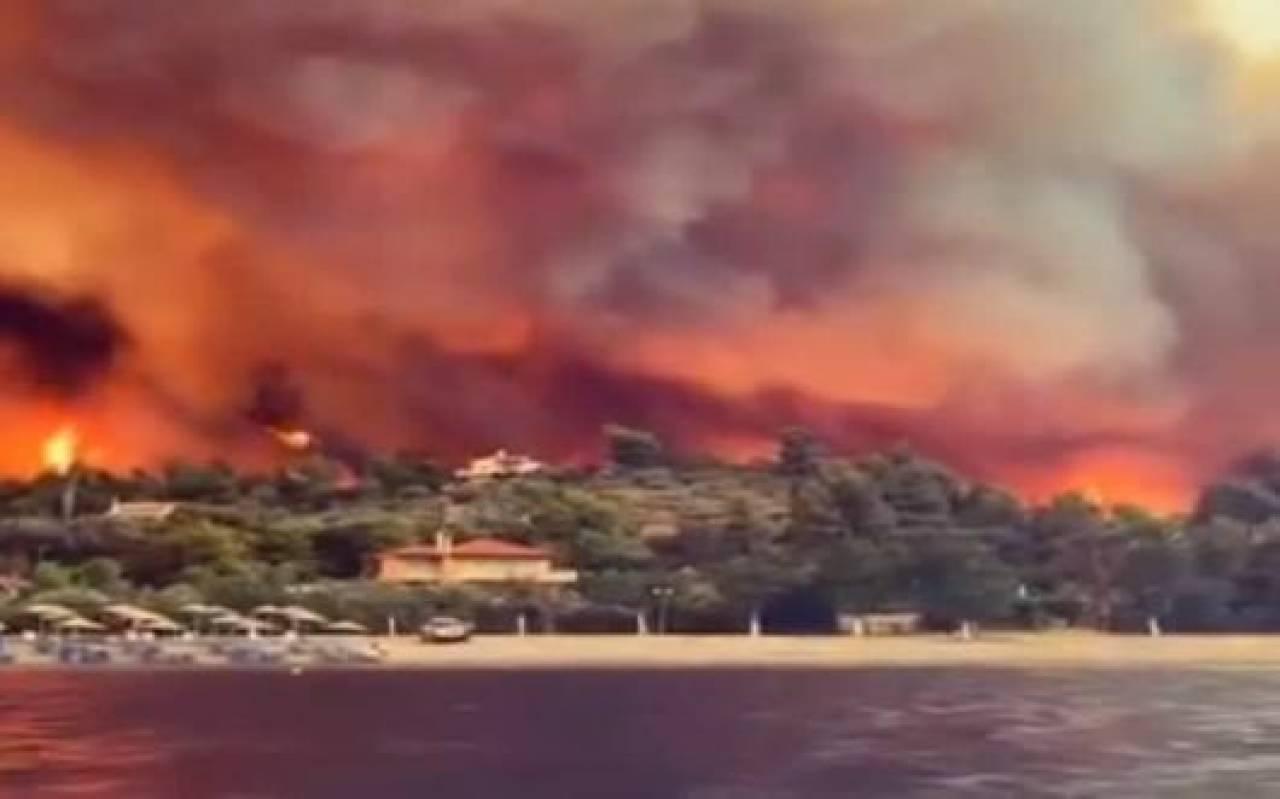 Gli incendi di agosto in Grecia in un'immagine di archivio