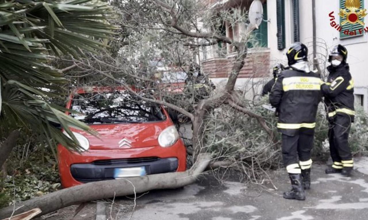 I danni della tempesta di vento di Grecale su Napoli