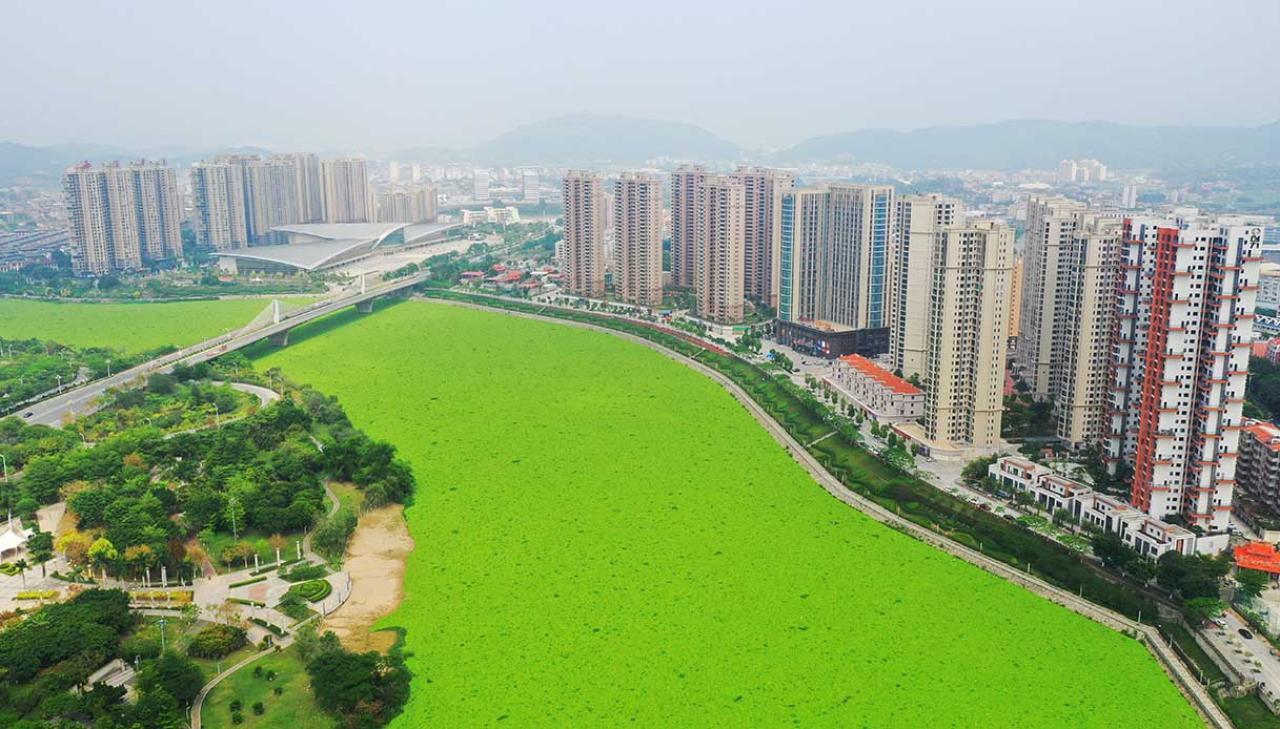 Il fiume Jin Jiang