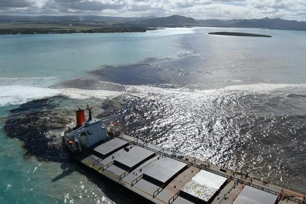 La marea nera a Mauritius (Fonte immagine: @Knochenfisch1 via twitter)