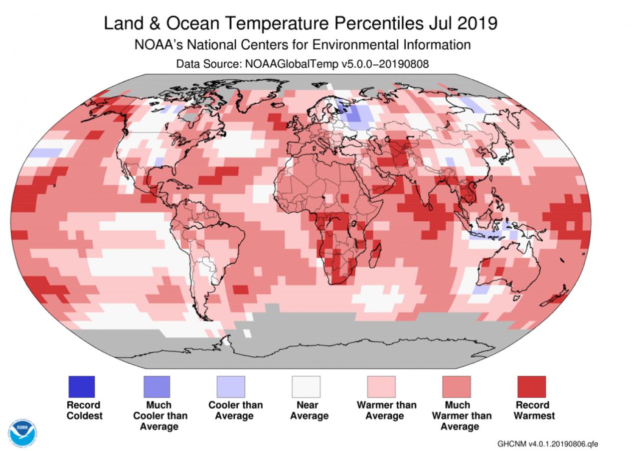 Meteo - Clima, Luglio 2019 rovente: il più caldo degli ultimi 140 anni