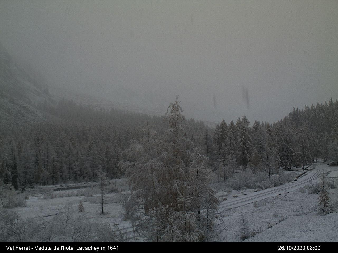 Neve in Val Ferret (AO) - 1600m