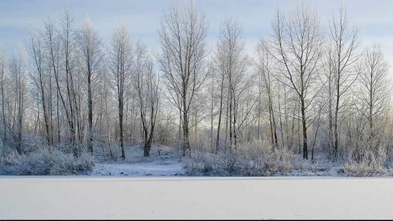 Meteo. In cammino verso l'Inverno. Estensione copertura nevosa in Siberia sotto media