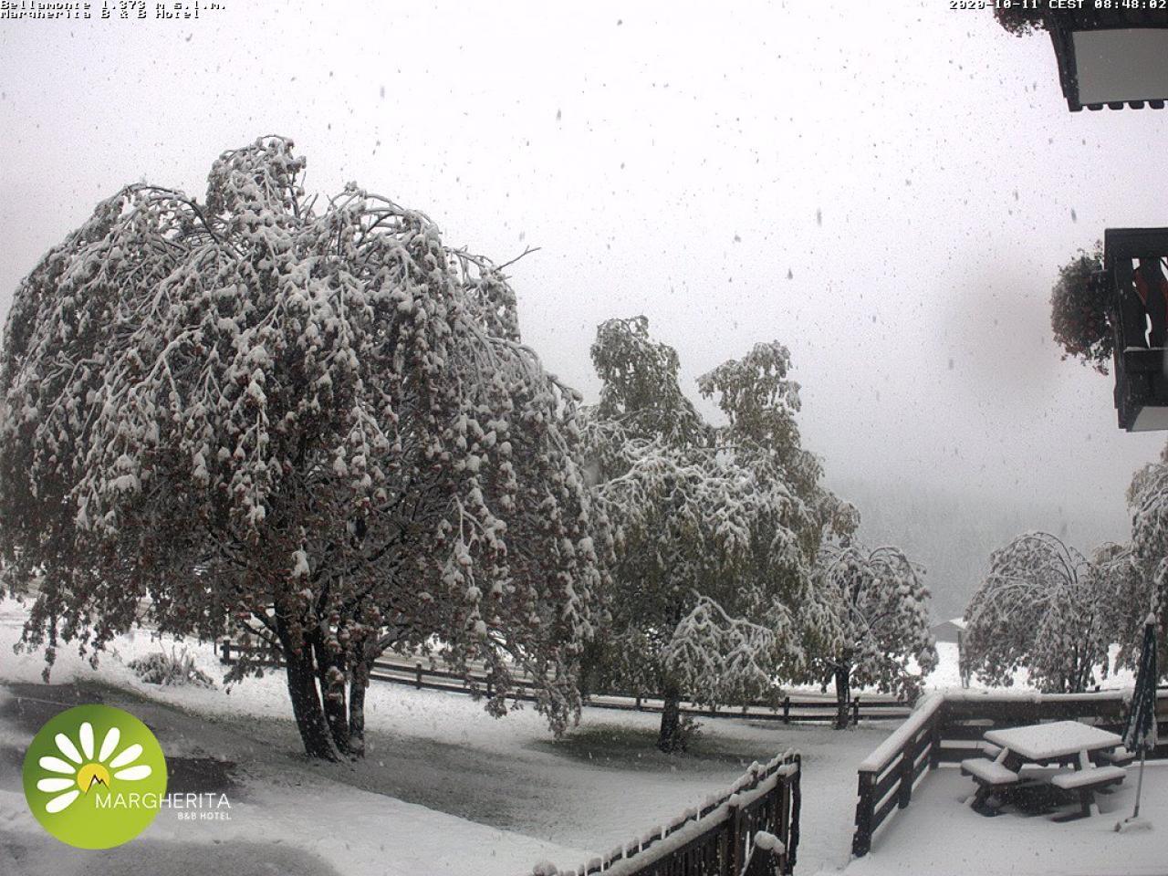 Nevica copiosamente a Bellamonte (TN)