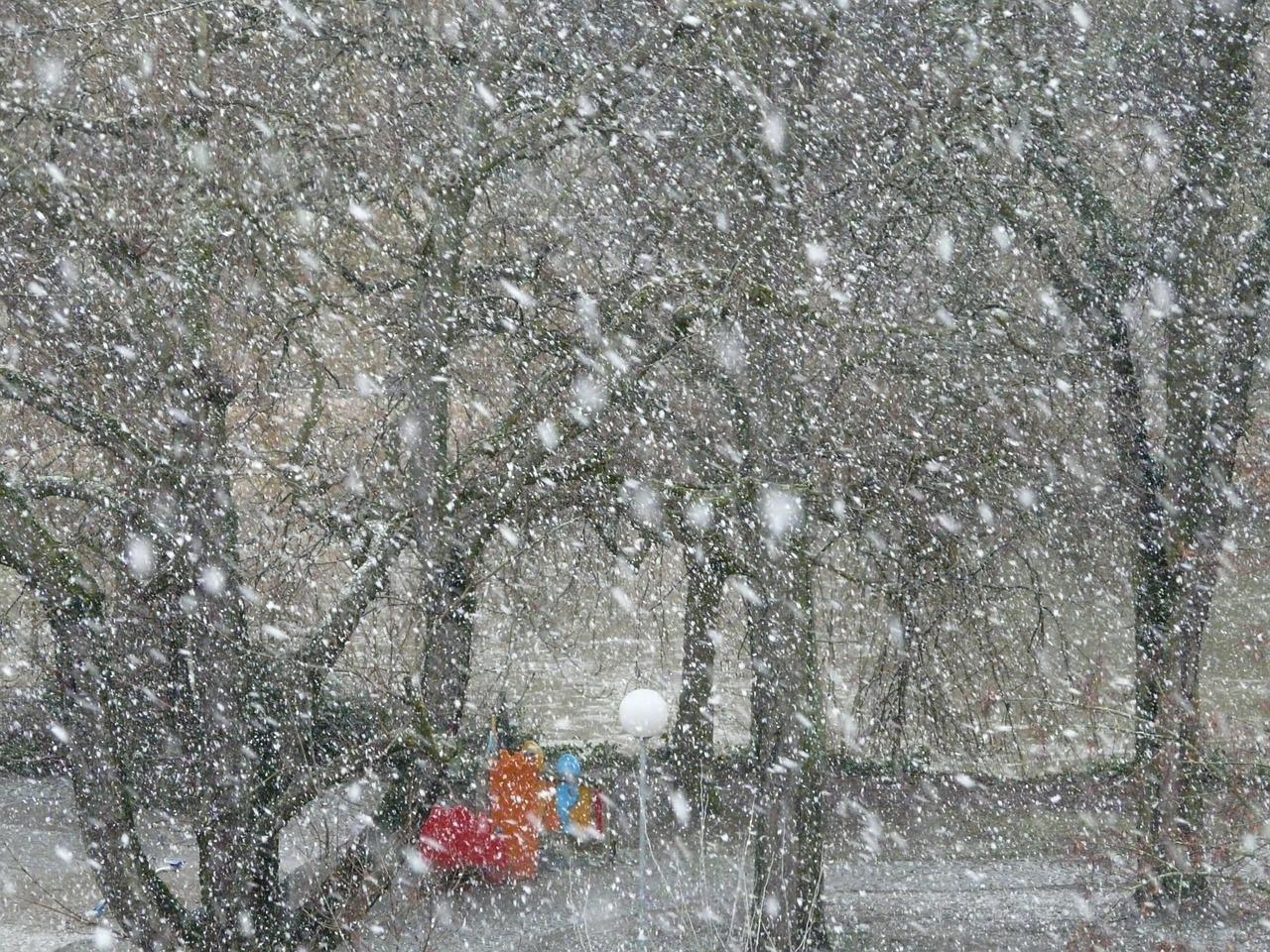 Nevicata tardiva nell'Ontario (Canada)