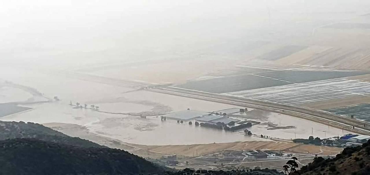 Tavoliere, campi allagati (Fonte Foggiatoday)