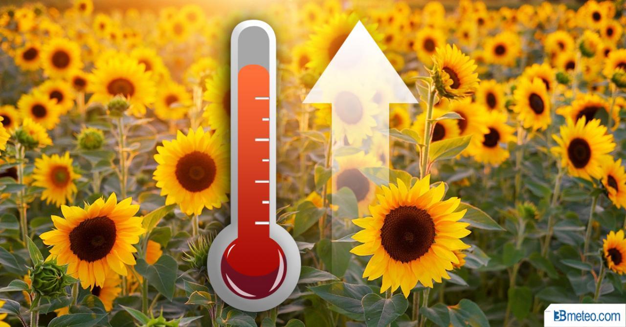 Temperature in aumento da lunedì