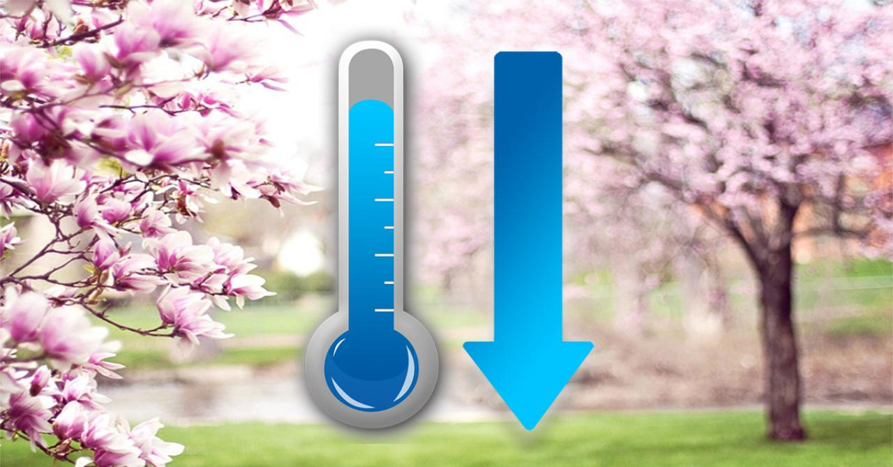 Temperature in decisa diminuzione nella prossima settimana
