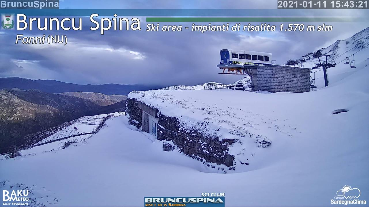 Webcam Bruncu Spina (NU)