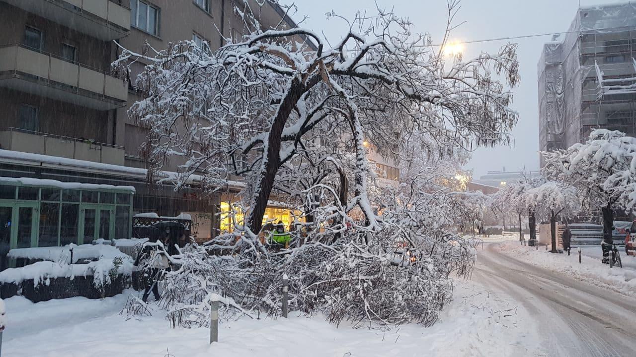 Zurigo venerdì mattina (Fonte: Swiss Severe Weather Centre via Twitter)