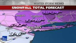 Neve nell'area di NY (Weather Channel )