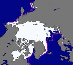 Estensione del Pack Artico a Dicembre, confrontata con la media ( in viola )