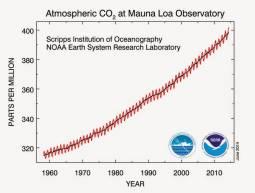 Andamento concentrazione di CO2