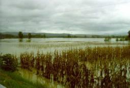 Alluvione del Piemonte del 13-16 OTTOBRE 2000