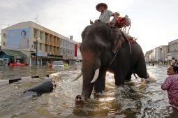 Alluvioni in Thailandia
