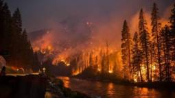 Devastanti incendi in Siberia