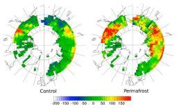 Simulazione di emissione di CO2 espresse in grammi di carbonio per metro quadrato. A sinistra la simulazione che non incluse i processi del permafrost a destra invece si