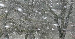 TEMPERATURE: molto miti fino al weekend, poi calano da domenica con qualche fiocco di neve sulle Alpi