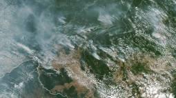 Brasile. Brucia l Amazzonia, il fumo nero arriva fino a San Paolo