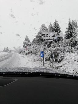 Neve al Passo del Tonale. Foto di Michela Dossi