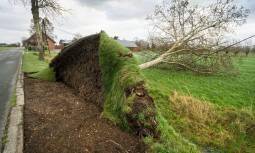 Tempesta Friederike mette in ginocchio Nord Europa. Vittime, disagi e caos nei trasporti