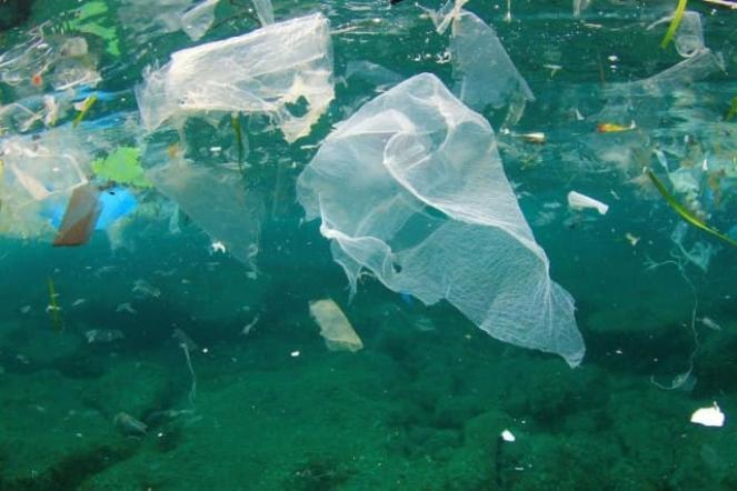 A Livorno si prova a combattere l'inquinamento da microplastiche in mare.
