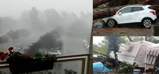 Albero su auto nel Delta, fonte Gazzettino. Camping distrutto a Venezia, fonte Nuova Venezia