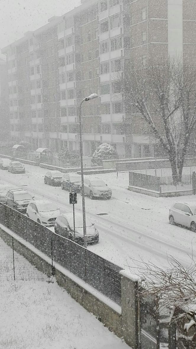 Alessandria questa mattina sotto una fitta nevicata