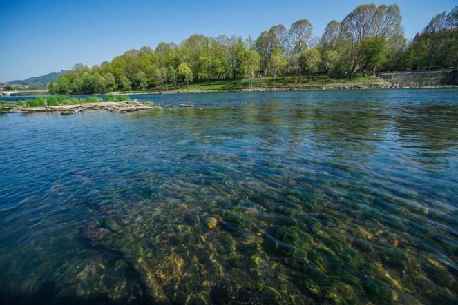 Ambiente e Coronavirus, Il fiume Po torna pulito come non si era mai visto (ansa)