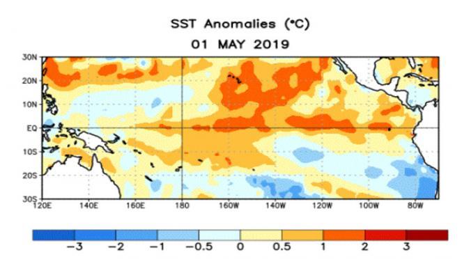 anomalie acque oceaniche