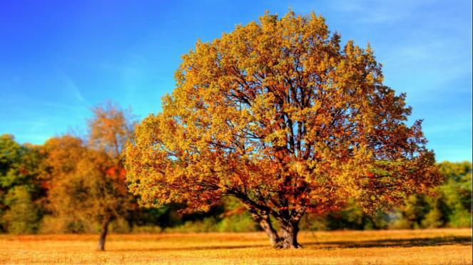 autunno 2017: meteo
