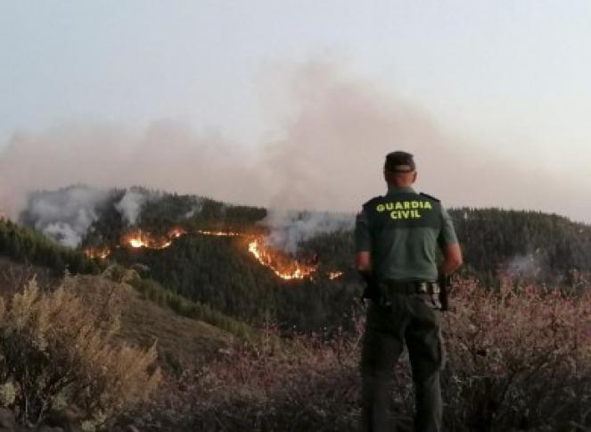Brucia la Gran Canariam (Fonte immagine: Guardia Civil)