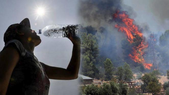 Caldo record e incendi devastanti in Europa