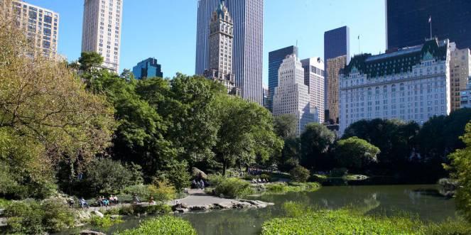 Central Park è un polmone verde per i Newyorchesi