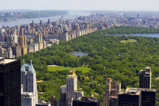 Central Park, un vero e proprio miracolo della botanica