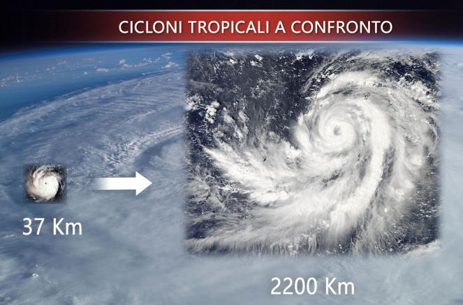 Cicloni tropicali a confronto