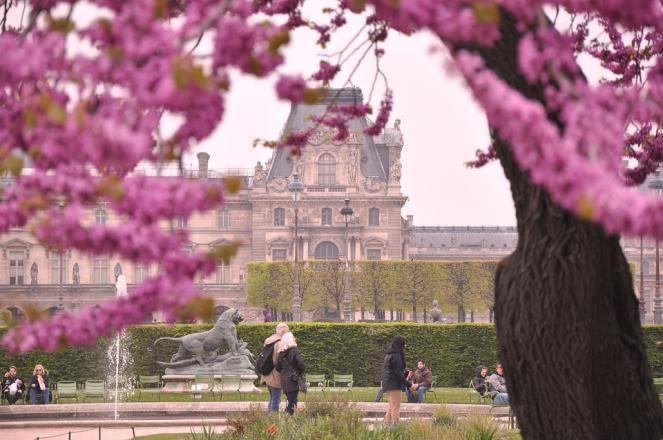 Clima da giugno inoltrato a Parigi (foto di repertorio)