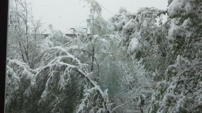 Continua a nevicare in Moldavia