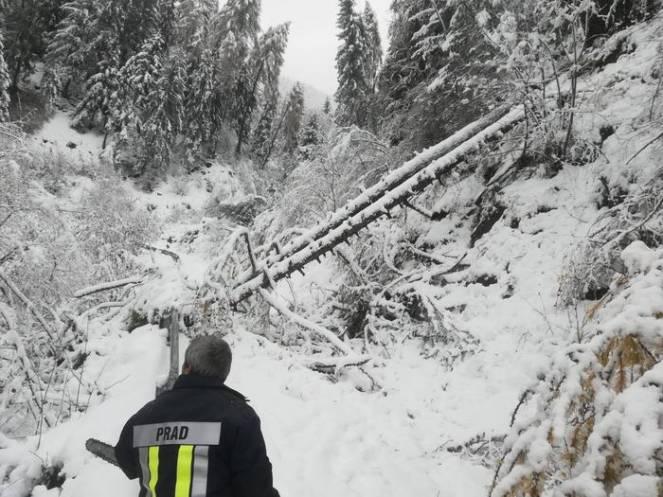 Continua l'emergenza neve il Alto Adige (fonte ansa)