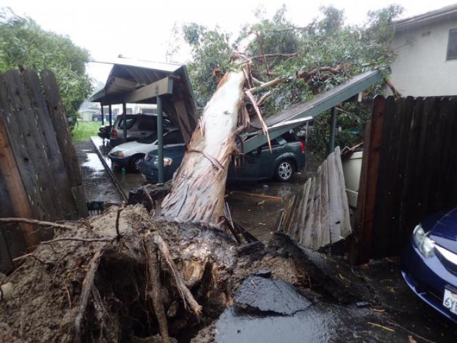 Un'intensa tempesta di pioggia ha flagellato la California del sud