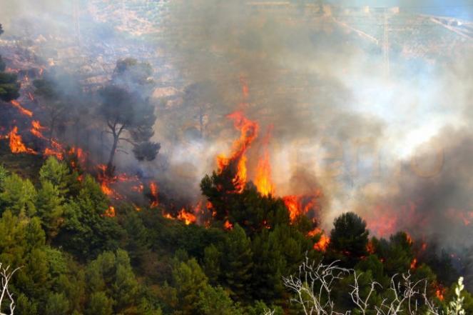 Emergenza incendi in Liguria paura a Genova